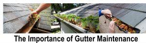 gutter maintenance