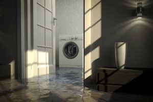 water damage cleanup filion