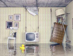 water damage lapeer, water damage cleanup lapeer, water damage restoration lapeer
