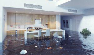 water damage lapeer, water damage restoration lapeer, water damage repair lapeer, water damage cleanup lapeer