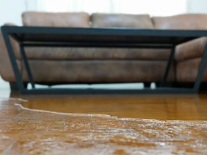 water damage cleanup oakland