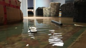Basement flooding in Lapeer